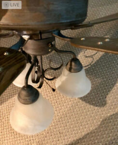 3-speed, 3-light ceiling fan, great working condition $40
