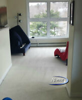 Professional Steam Cleaning April & May Special Offers