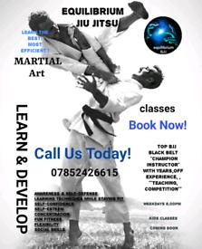 Bjj classes Brazilian jiu Jitsu