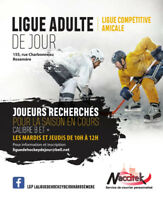 Ligue de hockey de jour à Rosemere.  Ligue de hockey adulte.