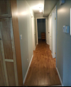REDUCED recently renovated 2 bedroom basement apartment