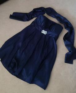 Size 24W Laura Plus Plum formal dress w/ scarf