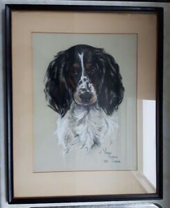 Original pastel drawing Springer Spaniel - Oan Alley Lash 1939