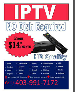 IPTV/ SERVICE SPECIAL PRICE FROM $14.99