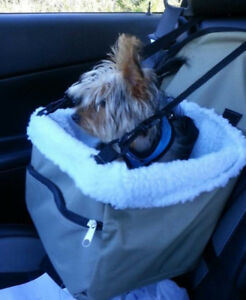 Doggie booster safety car seat.