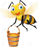 Busy Bees Cleaning Service