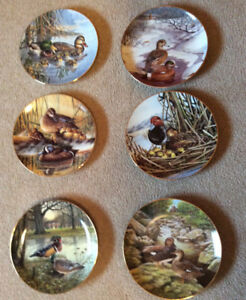 Collector Plates by Bruce Langton