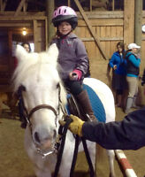 Riding lessons with Certified Instructors in Fredericton