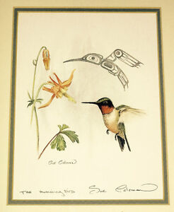 Sue Coleman framed print- The Humming Bird