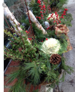 WANTED winter decorated WINDOW BOXES & URNS