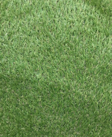 Artificial grass used 38mm