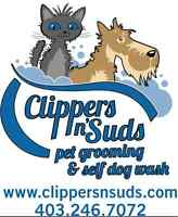 Groomer Assistant - Bather/dryer