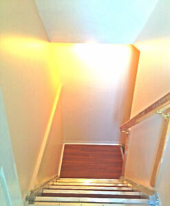 Basement Rental at Steeles and McLaughlin (NO EMAIL)