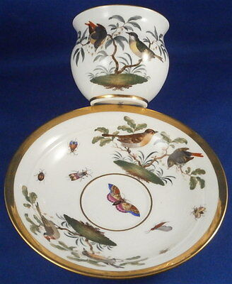 Great 19thC Meissen Porcelain Bird Scene Scenic Cup & Saucer Porzellan Tasse