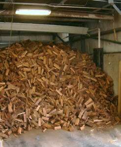 Firewood For camping Firewood for you fire pit or fireplace!!!!