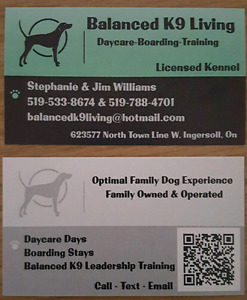 Balanced K9 Living Accepting New Dogs - Summer Stays/Daycare