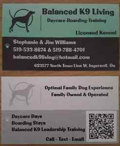 In home Dog Daycare & Boarding- Balanced K9 Living