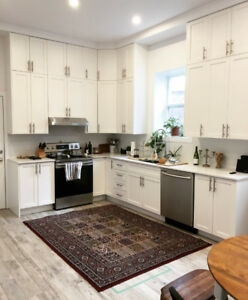 NEWLY RENOVATED & SPACIOUS 1400 SQ FT 2 CLOSED BDRM APARTMENT