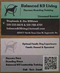 Balanced K9 Living Training Services - FREE Meet and Greet!