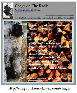 Fresh Ground Newfoundland Chaga Tea