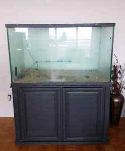 150 gallon fish tank and stand