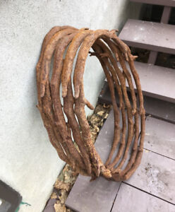 Large Cast Iron Decorative Rings (5)