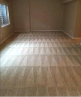 FON Pro-Carpet cleaning and Upholstery services