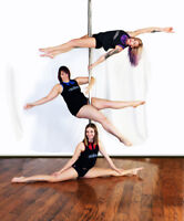 FULL BODY Workout (1st FREE) with Pole Fitness Kingston!