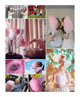 50%OFF Professional cotton candy machine and operator plus more