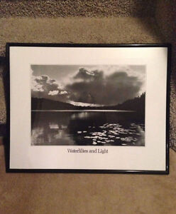 Waterlilies and light black and white framed picture Strathcona County Edmonton Area image 1