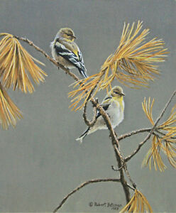 ROBERT BATEMAN - AMERICAN GOLDFINCH