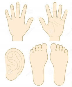 Foot, Hand and Ear Reflexology Course Strathcona County Edmonton Area image 2