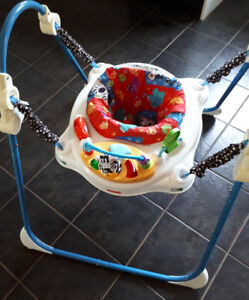 Fisher price jumperoo!