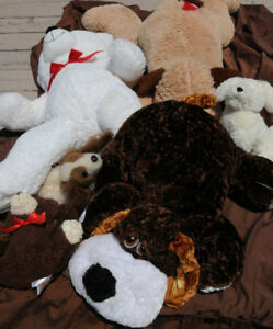 teddy bears stuffed x 6