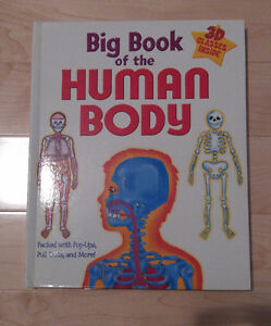 Human Body For Young Children