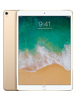 Like New Apple iPad Pro 10.5 Wifi Cellular LTE Gold 256GB + case