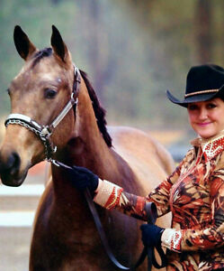 2010 APHA Solid Dun Mare
