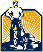 Lawn Mowing / Lawn Services Cheap Rates! No Lawn Too Overgrown!