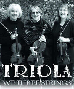 Live Wedding Music - TRIOLA...we 3 strings! Kingston Kingston Area image 1