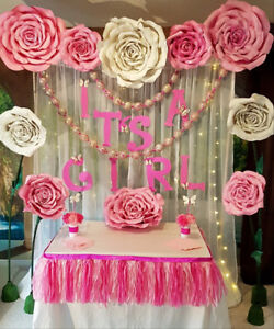 Baby Shower and Birthday party decoration for rent