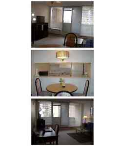 Looking for a fully furnished home with comport? This is for you Gatineau Ottawa / Gatineau Area image 3