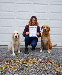 Private Dog Training in your home!