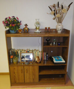 entertainment / wall unit