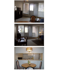 Looking for a fully furnished condo? This is perfect for you!