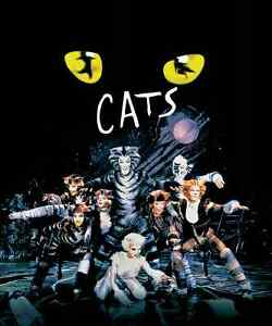 Looking for Cat's The Musical (1998) Dvd