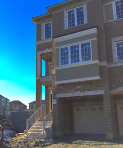 Brand new Large Townhouse 4 Bed 5 Bath