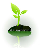 Looking for a Gardener this summer ??