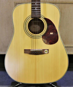 CORT EARTH 70NS ACOUSTIC GUITAR & BAG