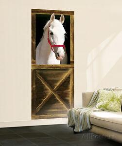 Horse Wallpaper Mural   eBay