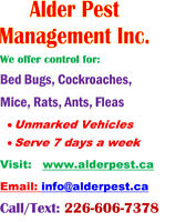 Pest control services- Hamilton, Stoney Creek, Burlington